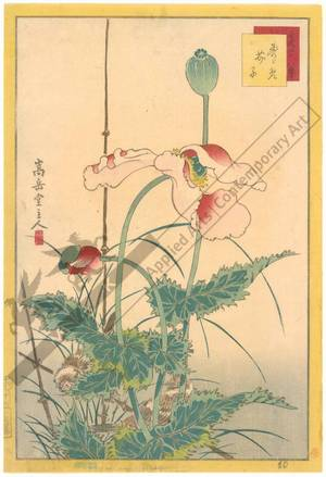 Nakayama Sugakudo: Sparrows and Poppies - Austrian Museum of Applied Arts