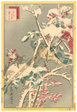Nakayama Sugakudo: Brown-eared Bulbul and Nanden-Bush - Austrian Museum of Applied Arts