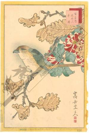 Nakayama Sugakudo: Shrike, withered Oak and Winter-Camellia - Austrian Museum of Applied Arts