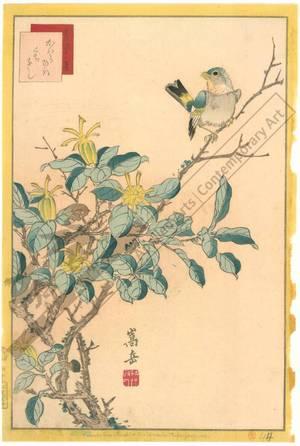 Nakayama Sugakudo: Greenfinch and Gardenia - Austrian Museum of Applied Arts