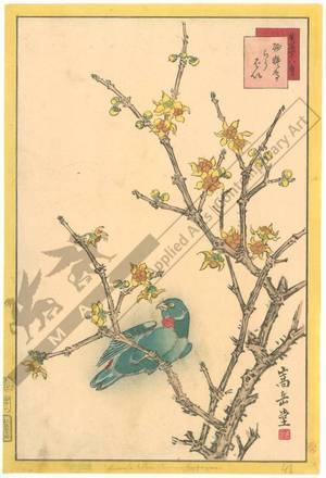 Nakayama Sugakudo: Parakeet and Wintersweet - Austrian Museum of Applied Arts