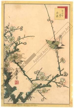 Nakayama Sugakudo: Warbler and White Plum - Austrian Museum of Applied Arts