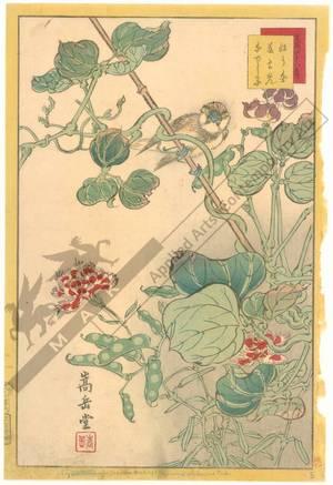 Nakayama Sugakudo: Pink - Austrian Museum of Applied Arts