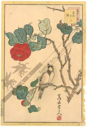 Nakayama Sugakudo: Titmouse and Camellia - Austrian Museum of Applied Arts