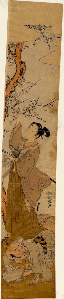 Isoda Koryusai: Man breaking off o plum blossom branch (title not original) - Austrian Museum of Applied Arts