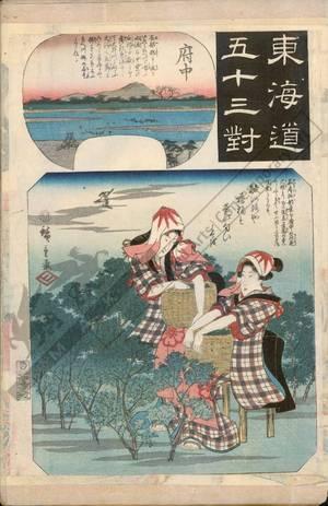 歌川広重: Fuchu (Station 19, Print 20) - Austrian Museum of Applied Arts