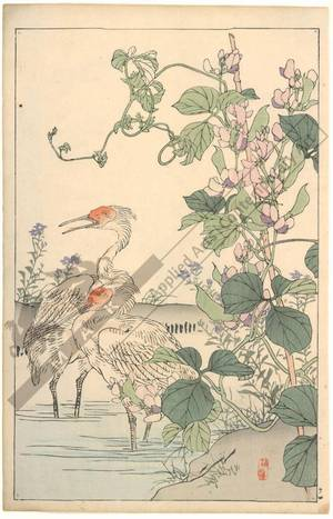 幸野楳嶺: Herons (title not original) - Austrian Museum of Applied Arts