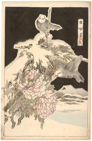 Kono Bairei: Birds and peonies (title not original) - Austrian Museum of Applied Arts