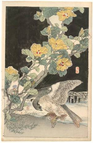 幸野楳嶺: A hawk and sparrow (title not original) - Austrian Museum of Applied Arts
