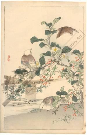 幸野楳嶺: Birds (title not original) - Austrian Museum of Applied Arts