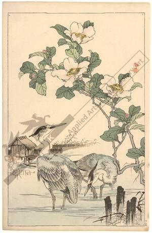 Kono Bairei: Egrets and camellias (title not original) - Austrian Museum of Applied Arts