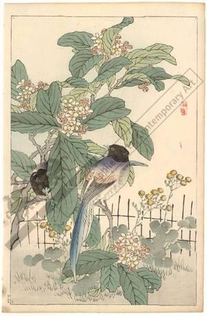 Kono Bairei: Megpies (title not original) - Austrian Museum of Applied Arts