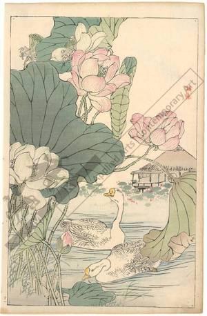 Kono Bairei: Swans (title not original) - Austrian Museum of Applied Arts