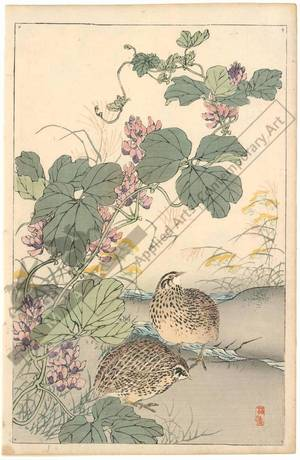 幸野楳嶺: Quails (title not original) - Austrian Museum of Applied Arts
