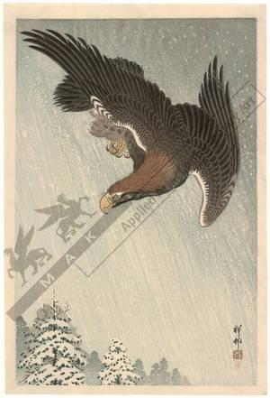 Shoson Ohara: Eagle in flight (title not original) - Austrian Museum of Applied Arts
