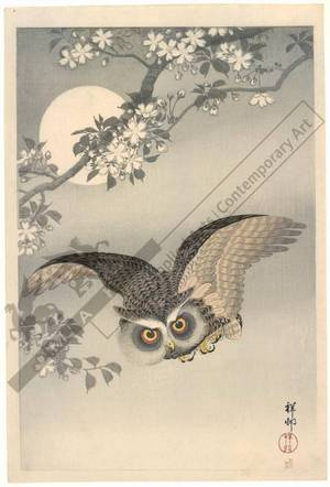 Shoson Ohara: Owl in flight (title not original) - Austrian Museum of Applied Arts