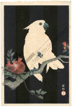 Shoson Ohara: Parrot and pomegranate (title not original) - Austrian Museum of Applied Arts