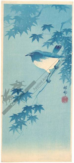 Shoson Ohara: Bird on a twig of a maple tree (title not original) - Austrian Museum of Applied Arts