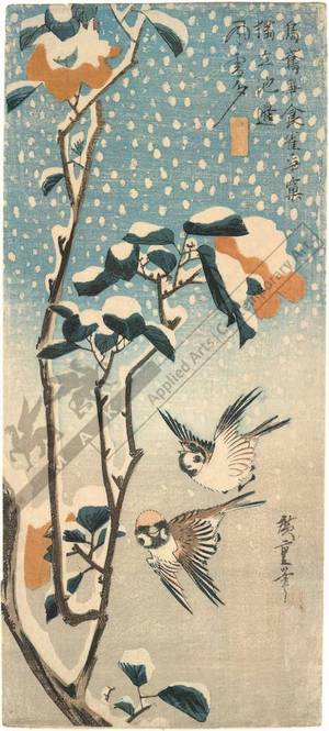 Utagawa Hiroshige: Sparrows and camellia and snowfall (title not original) - Austrian Museum of Applied Arts