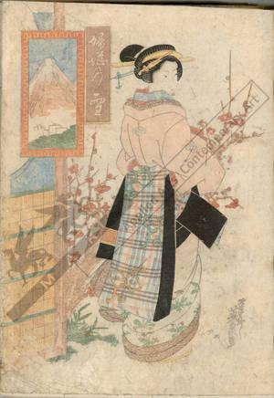 Keisai Eisen: Courtesan befor plum tree (title not original) - Austrian Museum of Applied Arts