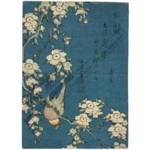 Katsushika Hokusai: Weeping cherry and bullfinch - Austrian Museum of Applied Arts