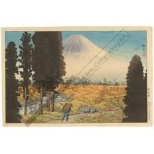 Watanabe Shotei: Shuyuzawa - Austrian Museum of Applied Arts