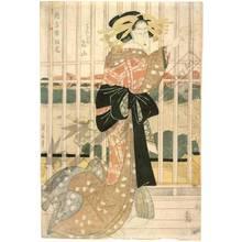 菊川英山: Temporary teahouses of New Yoshiwara, The courtesan Meizan from the Choji house - Austrian Museum of Applied Arts