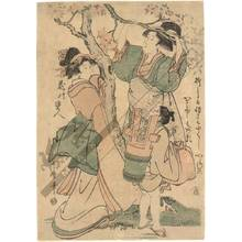 Kitagawa Utamaro: Breaking a cherry branch (title not original) - Austrian Museum of Applied Arts