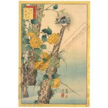 Nakayama Sugakudo: Kingfisher and Yellow Rose - Austrian Museum of Applied Arts
