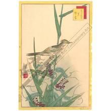Nakayama Sugakudo: Reed and Wisteria - Austrian Museum of Applied Arts