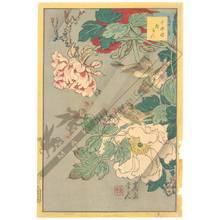 Nakayama Sugakudo: Peony - Austrian Museum of Applied Arts