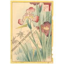 Nakayama Sugakudo: Heron and Iris - Austrian Museum of Applied Arts
