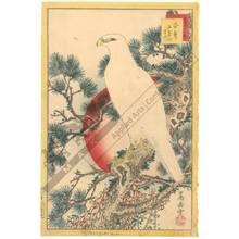 Nakayama Sugakudo: White hawk and white pine - Austrian Museum of Applied Arts