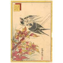 Nakayama Sugakudo: Swallows and Safflower - Austrian Museum of Applied Arts