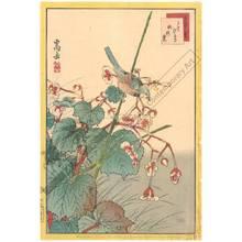 Nakayama Sugakudo: Throttle and Begonia - Austrian Museum of Applied Arts