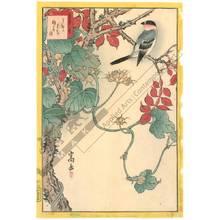 Nakayama Sugakudo: Bullfinch and morning glory with fruits - Austrian Museum of Applied Arts