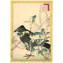 Nakayama Sugakudo: Jackdaw and knotgrass - Austrian Museum of Applied Arts