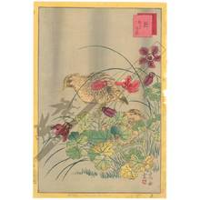 Nakayama Sugakudo: Quails and Aquilegia - Austrian Museum of Applied Arts