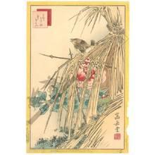 Nakayama Sugakudo: Wren and winter peony - Austrian Museum of Applied Arts
