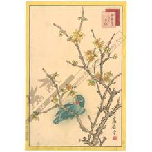 Nakayama Sugakudo: Parakeet and Wintersweet - Austrian Museum of Applied Arts