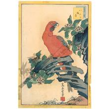 Nakayama Sugakudo: Macaw and Sweet Daphne - Austrian Museum of Applied Arts