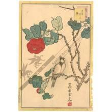 Nakayama Sugakudo: Titmouse and Camellia - Austrian Museum of Applied Arts