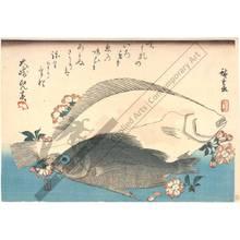 歌川広重: Flounder and Mebaru - Austrian Museum of Applied Arts