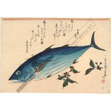 歌川広重: Bonito (title not original) - Austrian Museum of Applied Arts