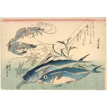歌川広重: Horse-mackerel and prawns (title not original) - Austrian Museum of Applied Arts