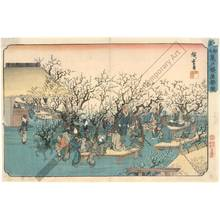 歌川広重: Plum garden at Kameido - Austrian Museum of Applied Arts