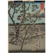 二歌川広重: Cherry blossoms on the Sumida embankment in the eastern capital - Austrian Museum of Applied Arts