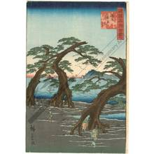 Utagawa Hiroshige II: Beach at Maiko in the province of Harima - Austrian Museum of Applied Arts