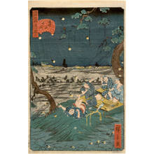 Utagawa Hirokage: Number 20: Listening to the insects at Mount Dokan - Austrian Museum of Applied Arts