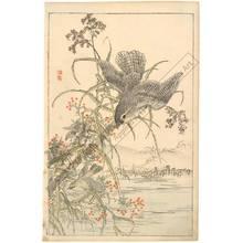 Kono Bairei: Flying birds (title not original) - Austrian Museum of Applied Arts